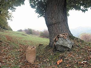 Pit Monviso Cia Confederazione Italiana Agricoltori Cuneo Le